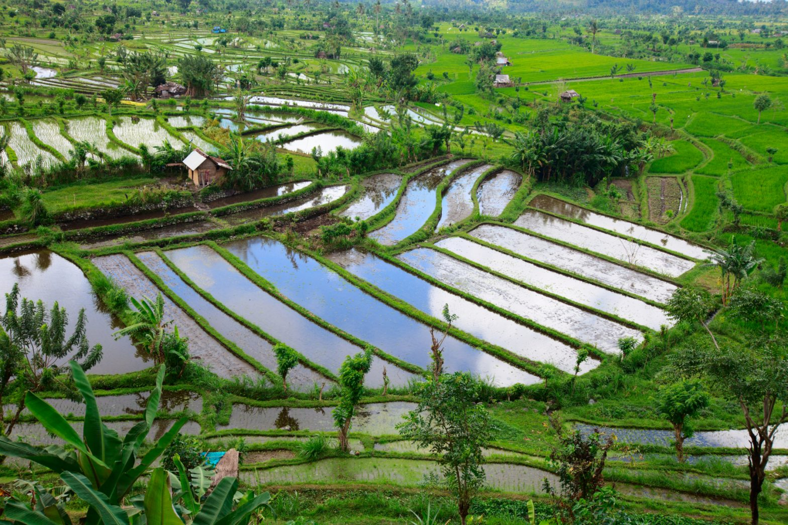 Indonesien – das Inselparadies am Äquator